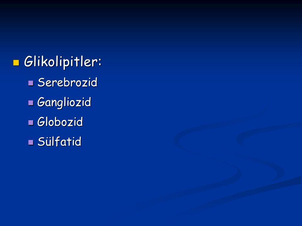 Glikolipitler: Serebrozid Gangliozid Globozid Sülfatid