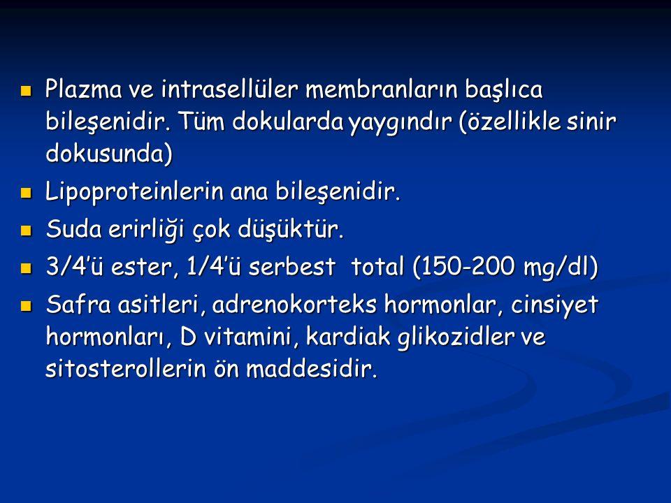 Plazma ve intrasellüler membranların başlıca bileşenidir
