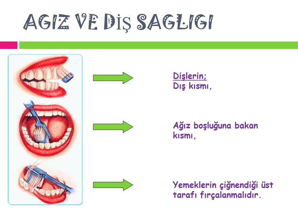 AGIZ VE DİŞ SAGLIGI Dişlerin; Dış kısmı, Ağız boşluğuna bakan kısmı,