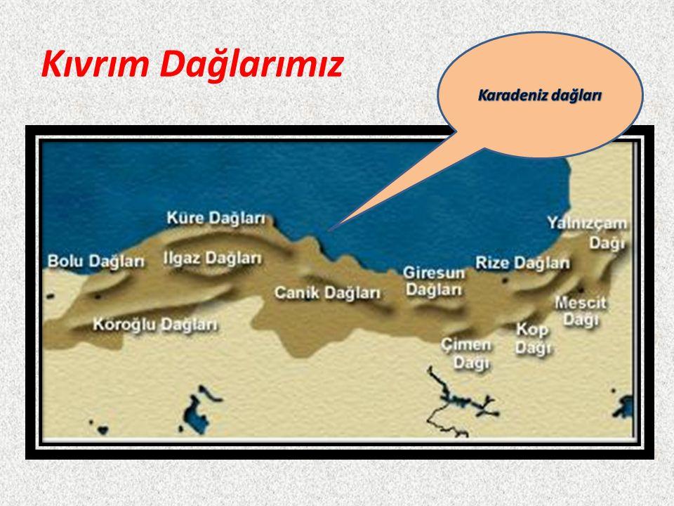 Kıvrım Dağlarımız Karadeniz dağları