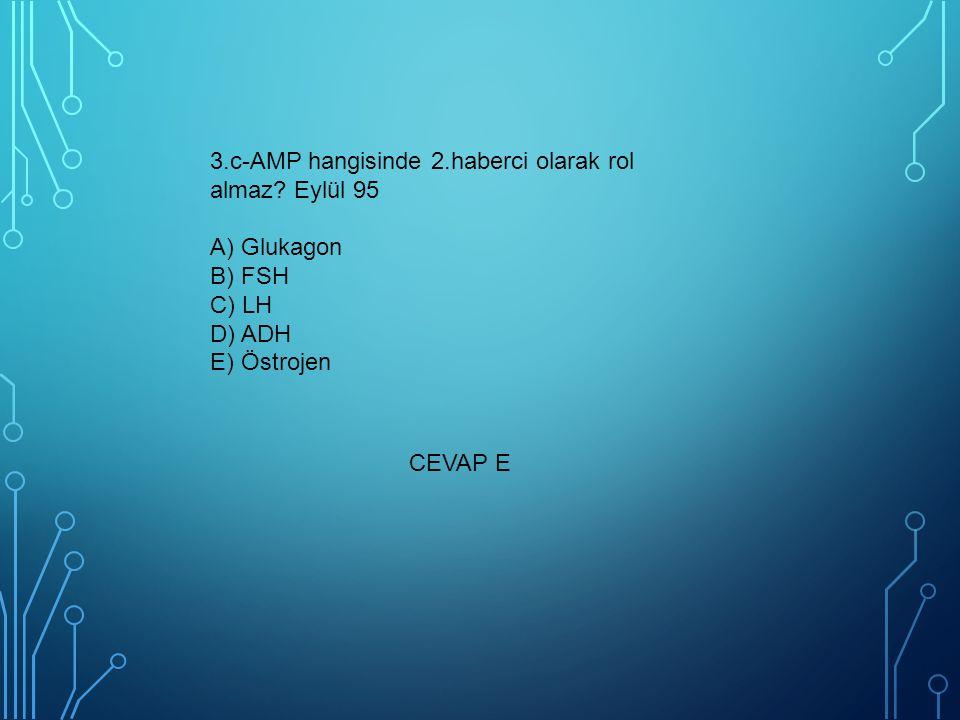 3. c-AMP hangisinde 2. haberci olarak rol almaz