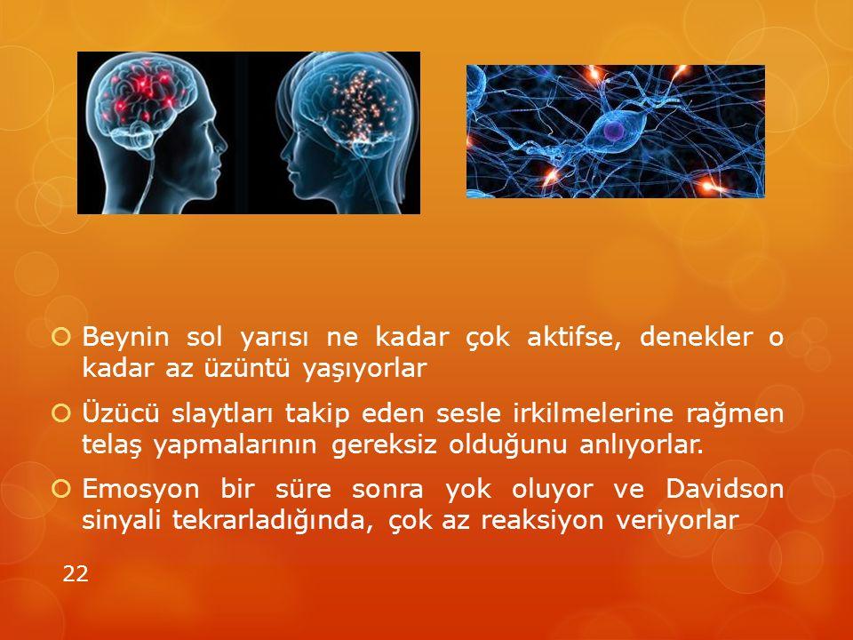Beynin sol yarısı ne kadar çok aktifse, denekler o kadar az üzüntü yaşıyorlar