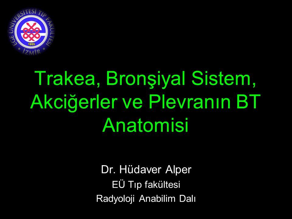 Trakea, Bronşiyal Sistem, Akciğerler ve Plevranın BT Anatomisi