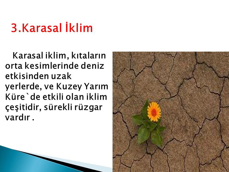 3.Karasal İklim