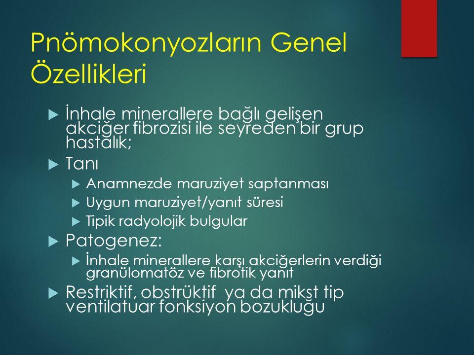 Pnömokonyozların Genel Özellikleri