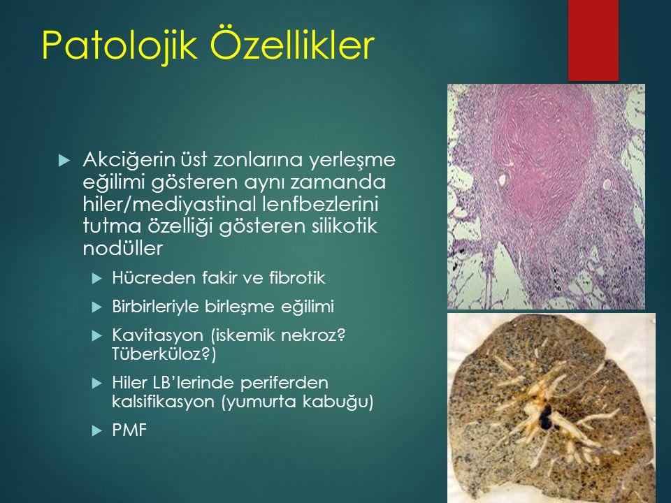 Patolojik Özellikler