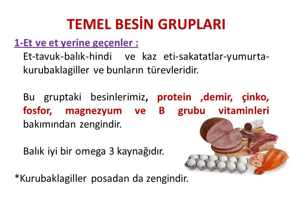 TEMEL BESİN GRUPLARI