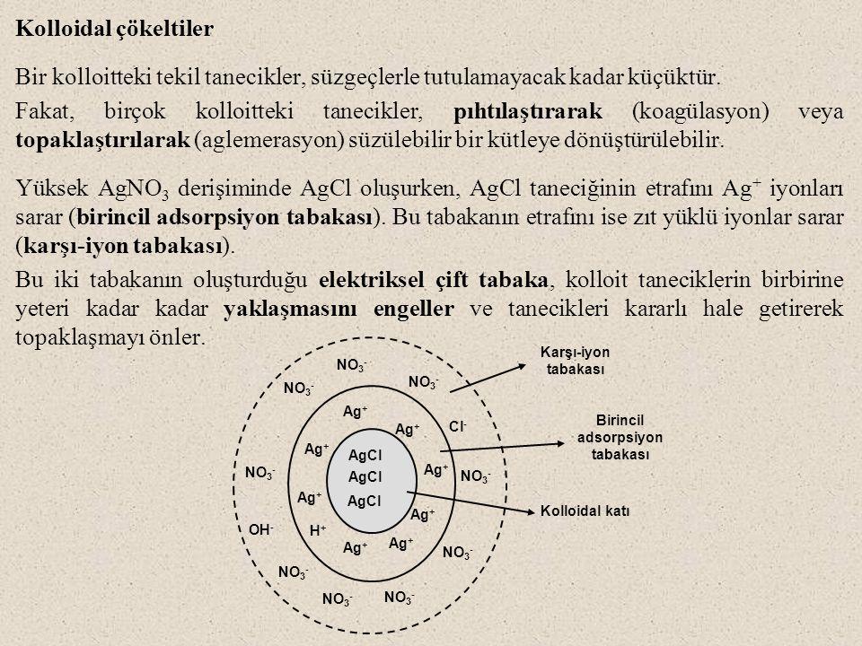 Birincil adsorpsiyon tabakası