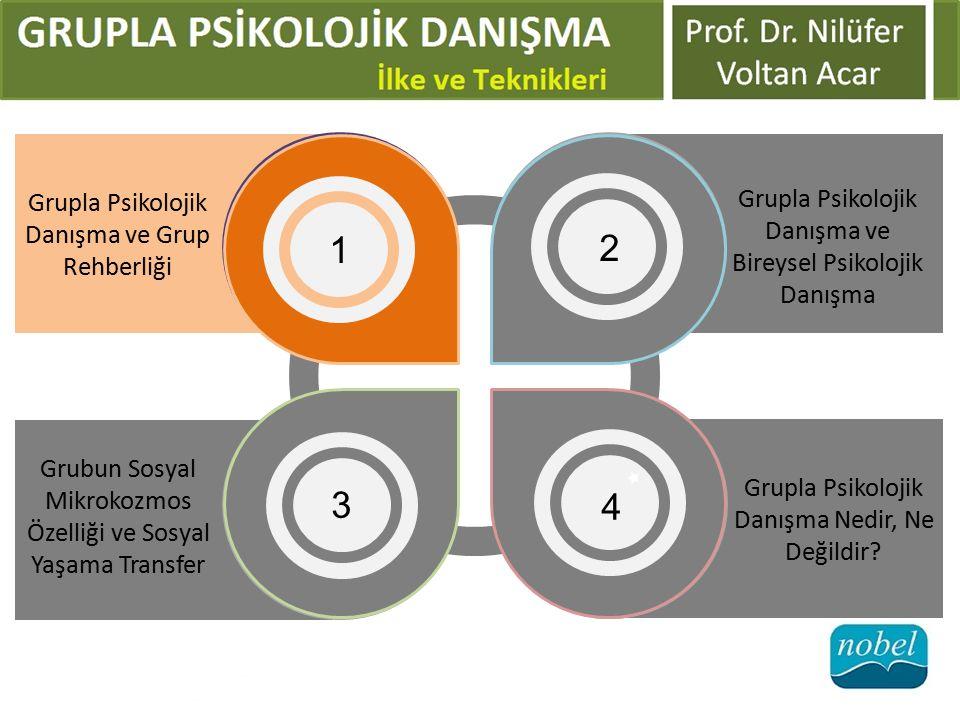 1 2 3 4 Grupla Psikolojik Danışma ve Bireysel Psikolojik Danışma