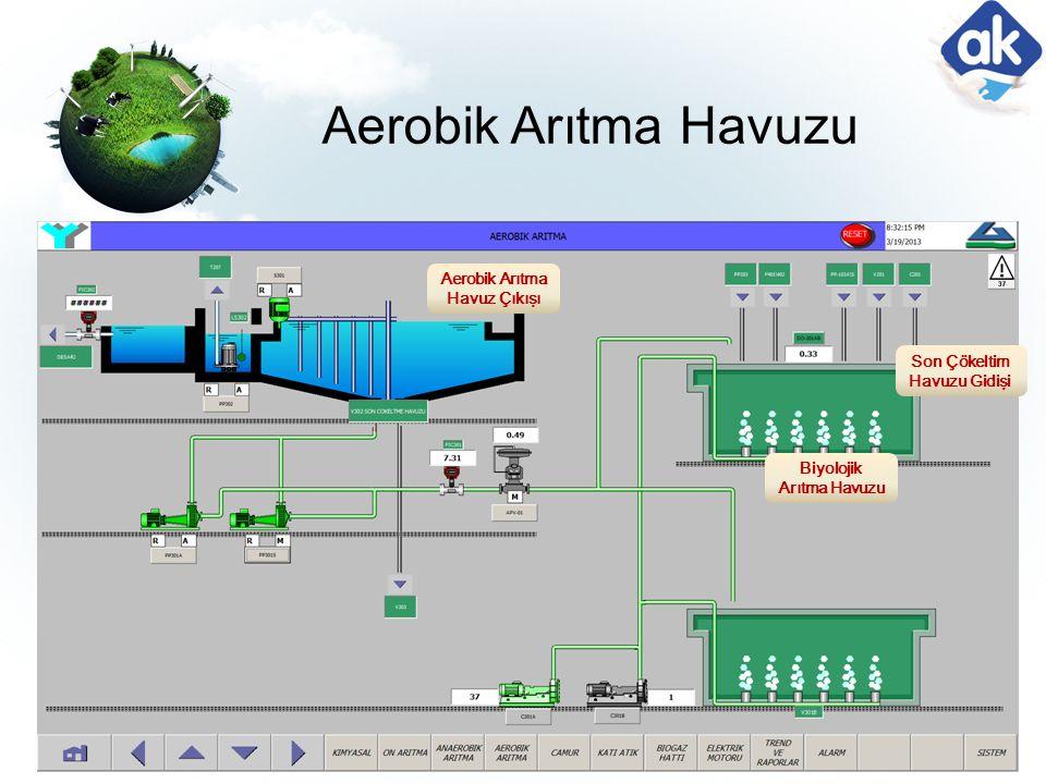 Aerobik Arıtma Havuzu Aerobik Arıtma Havuz Çıkışı