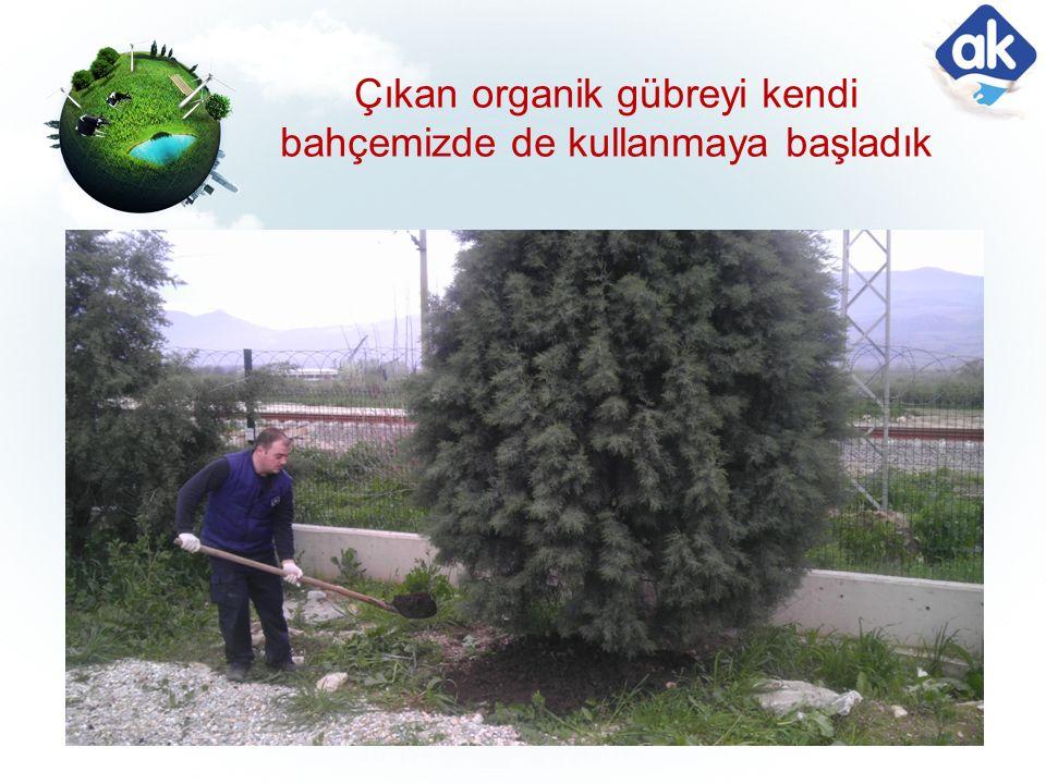 Çıkan organik gübreyi kendi bahçemizde de kullanmaya başladık