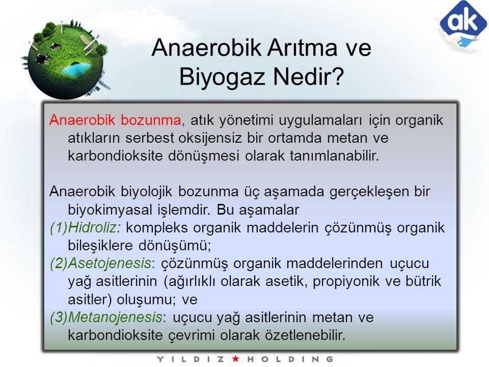 Anaerobik Arıtma ve Biyogaz Nedir