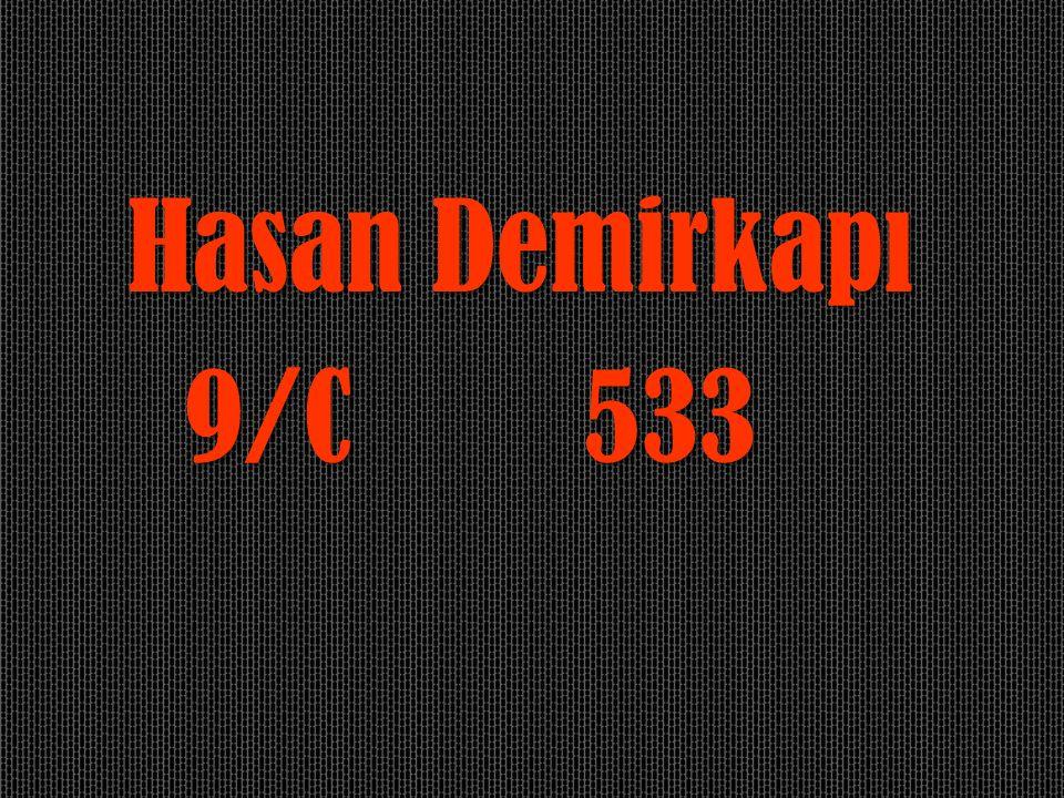Hasan Demirkapı 9/C 533