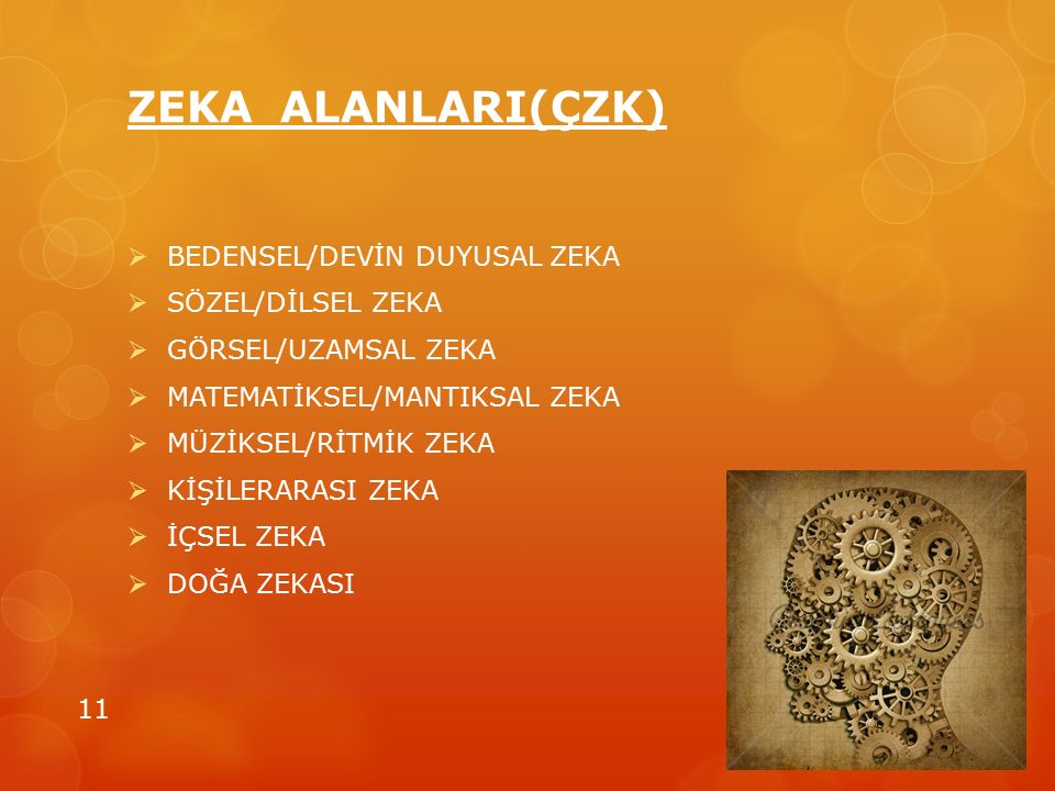 ZEKA ALANLARI(ÇZK) BEDENSEL/DEVİN DUYUSAL ZEKA SÖZEL/DİLSEL ZEKA