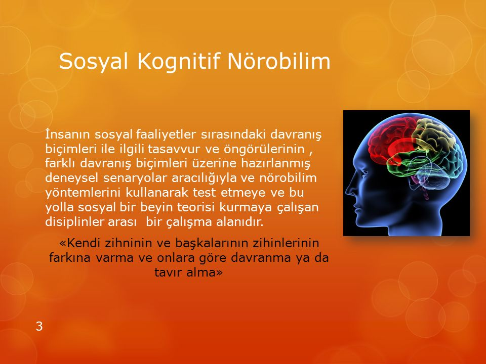 Sosyal Kognitif Nörobilim