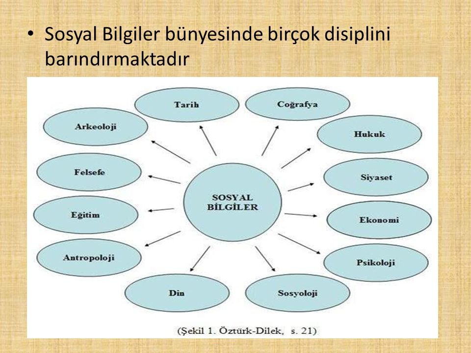 Sosyal Bilgiler bünyesinde birçok disiplini barındırmaktadır