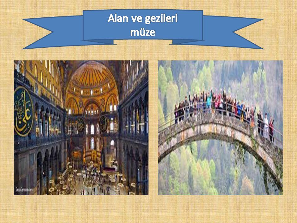 Alan ve gezileri müze