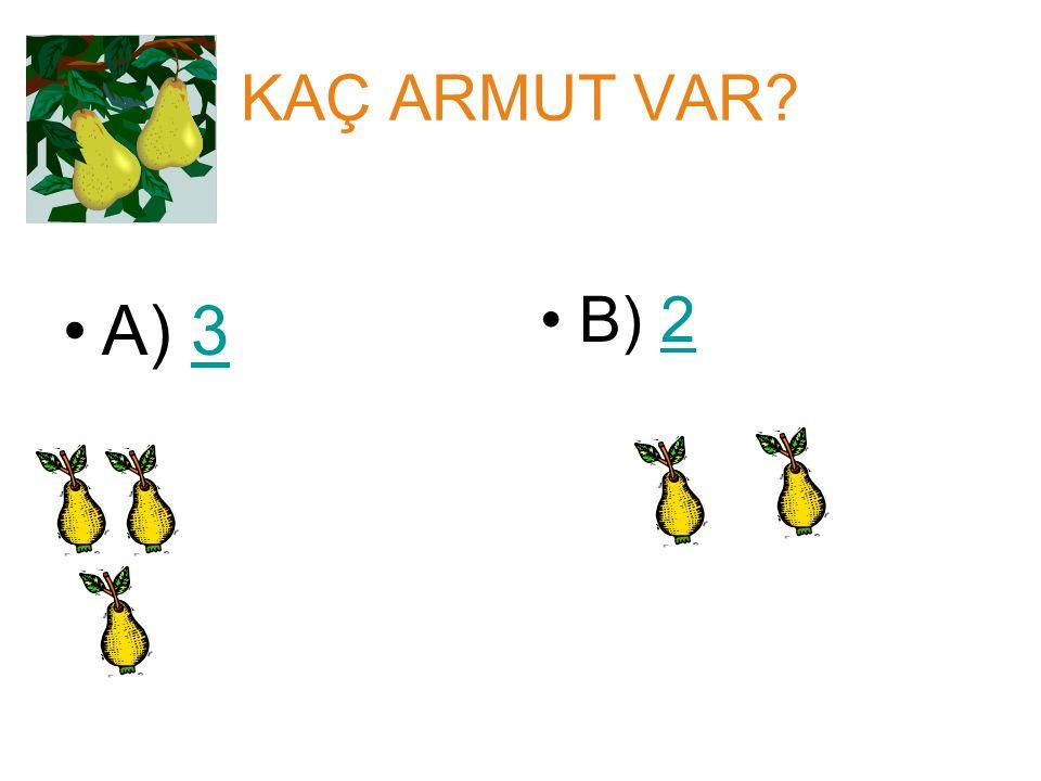 KAÇ ARMUT VAR A) 3 B) 2