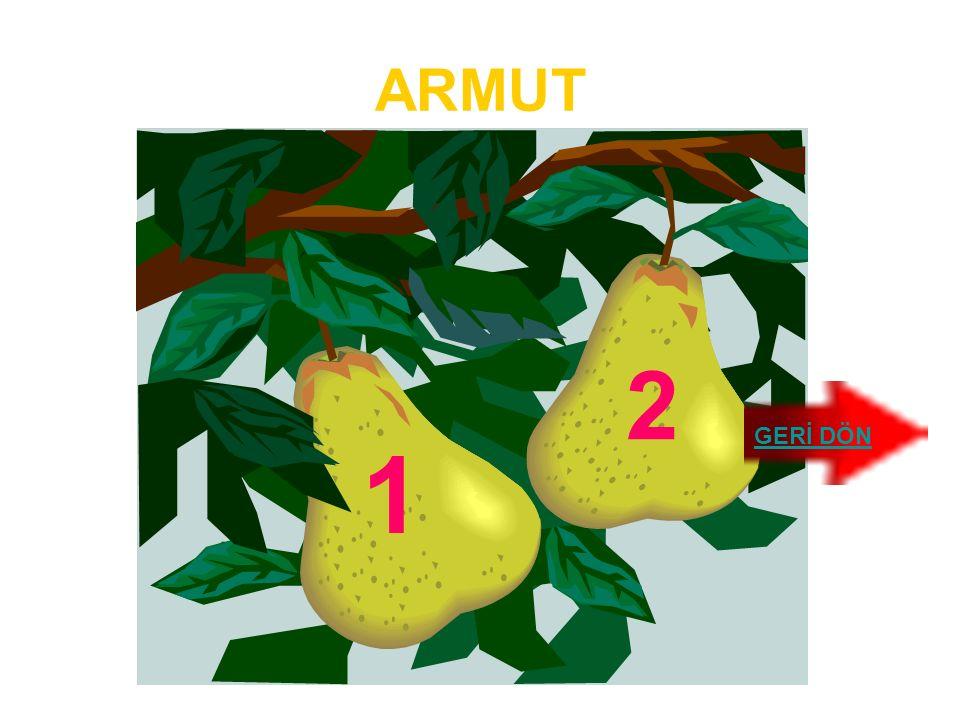 ARMUT 2 GERİ DÖN 1
