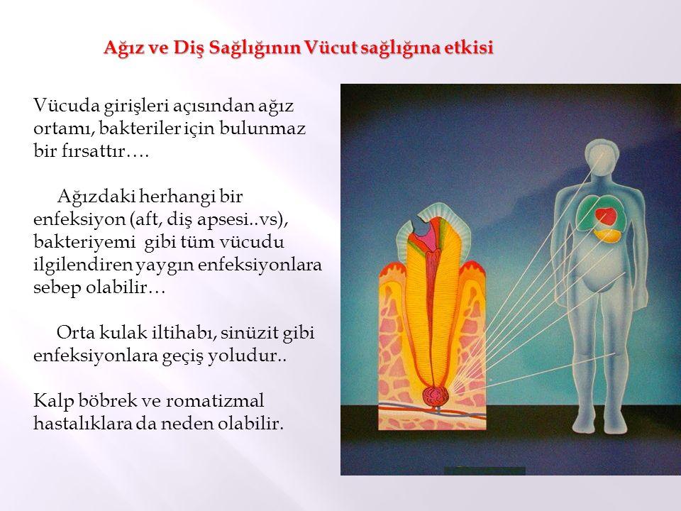 Ağız ve Diş Sağlığının Vücut sağlığına etkisi
