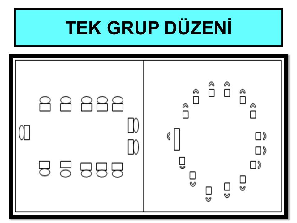 TEK GRUP DÜZENİ