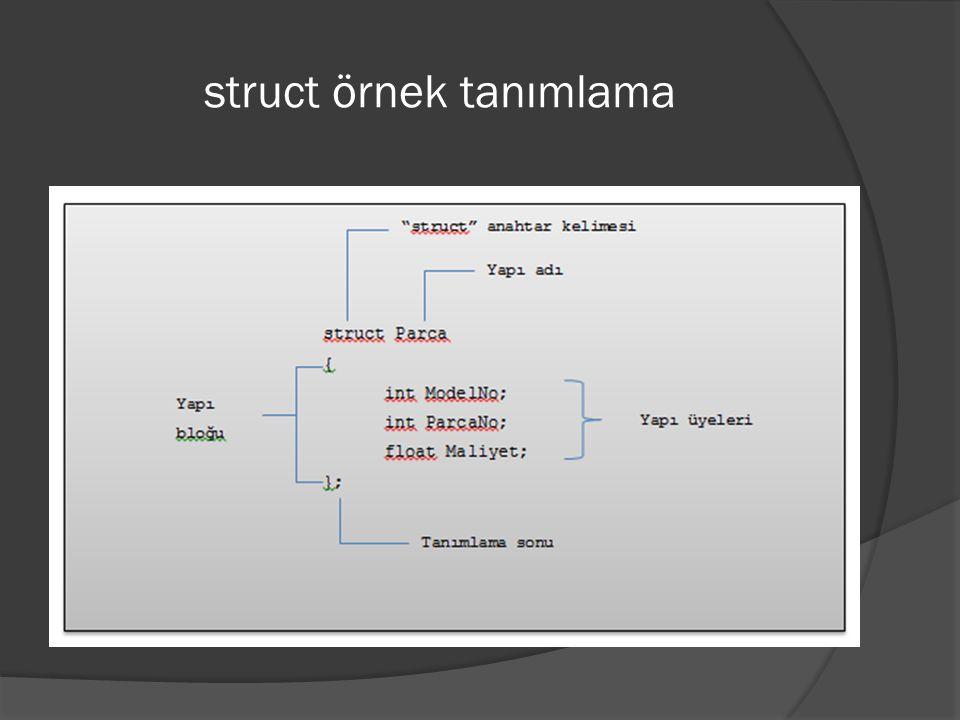 struct örnek tanımlama