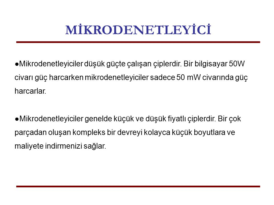 MİKRODENETLEYİCİ