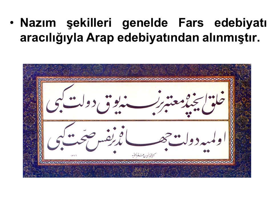 Nazım şekilleri genelde Fars edebiyatı aracılığıyla Arap edebiyatından alınmıştır.