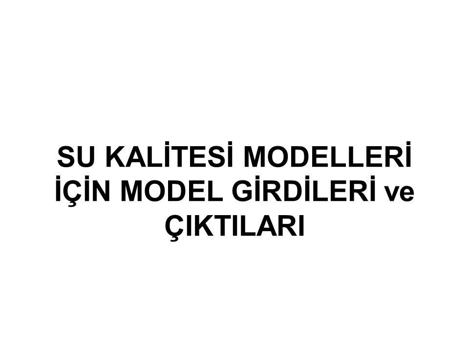 SU KALİTESİ MODELLERİ İÇİN MODEL GİRDİLERİ ve ÇIKTILARI