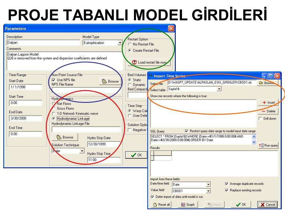 PROJE TABANLI MODEL GİRDİLERİ