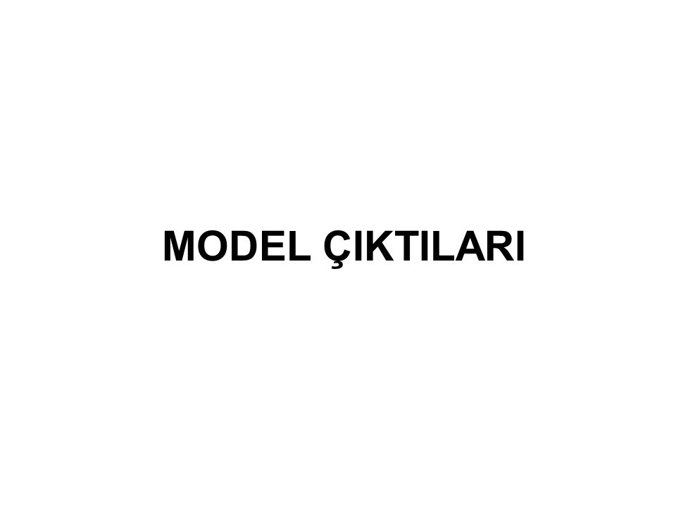 MODEL ÇIKTILARI