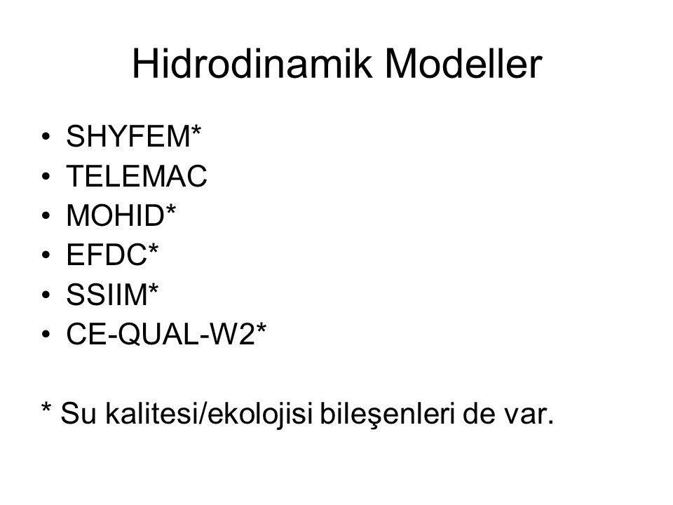 Hidrodinamik Modeller