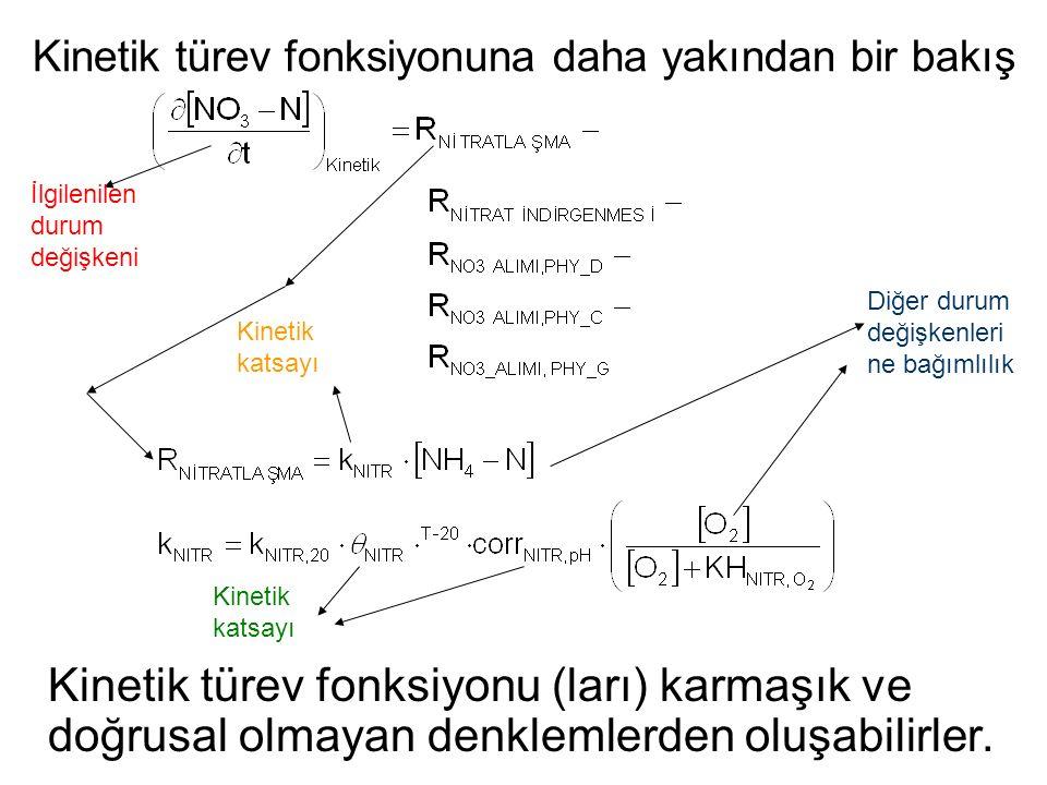 Kinetik türev fonksiyonuna daha yakından bir bakış