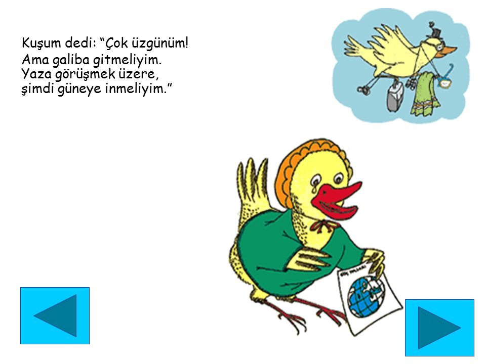 Kuşum dedi: Çok üzgünüm!
