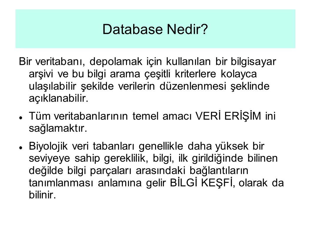 Database Nedir