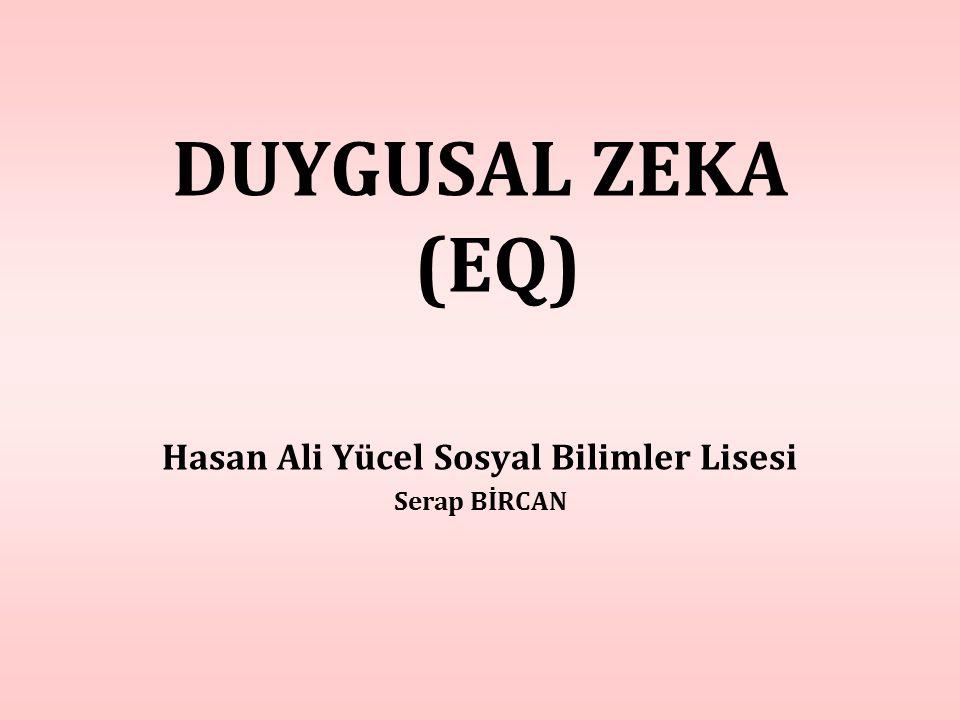Hasan Ali Yücel Sosyal Bilimler Lisesi