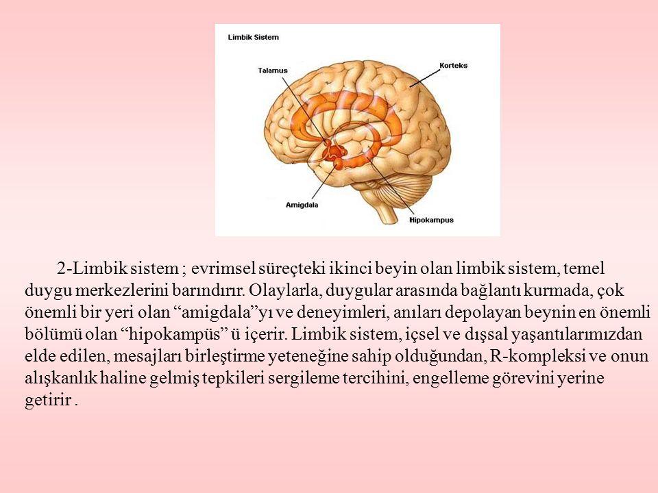 2-Limbik sistem ; evrimsel süreçteki ikinci beyin olan limbik sistem, temel duygu merkezlerini barındırır.