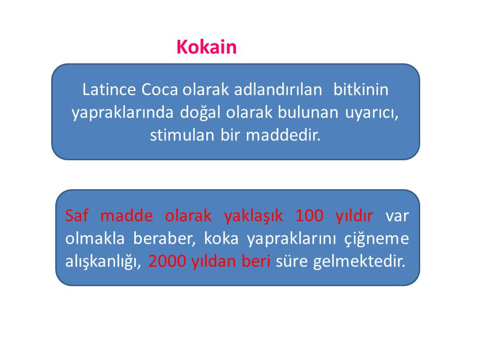 Kokain Latince Coca olarak adlandırılan bitkinin yapraklarında doğal olarak bulunan uyarıcı, stimulan bir maddedir.
