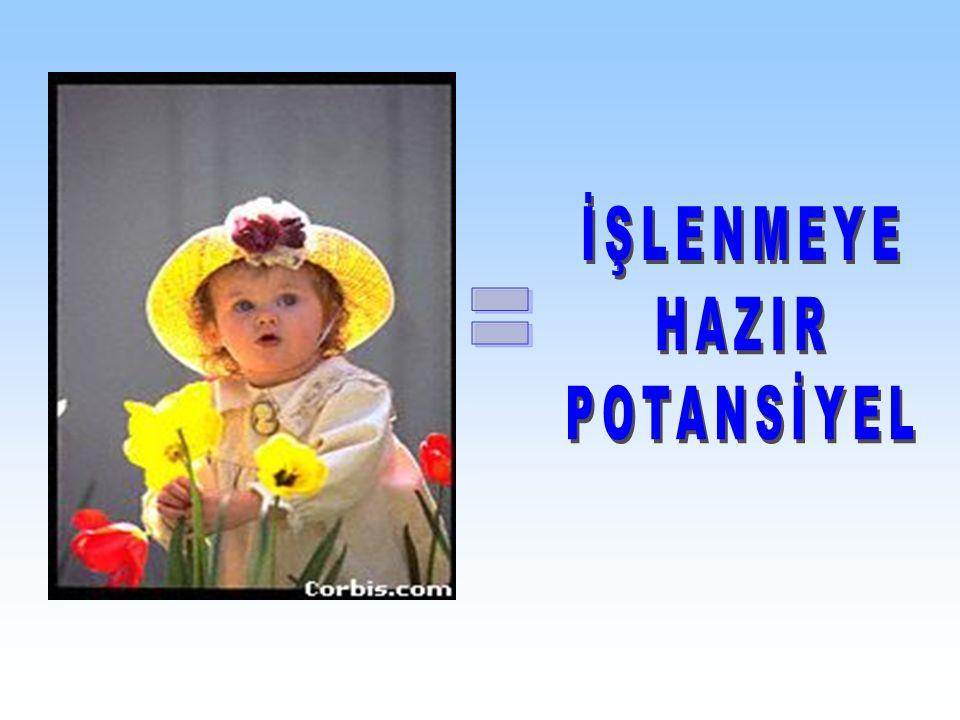 İŞLENMEYE HAZIR POTANSİYEL =