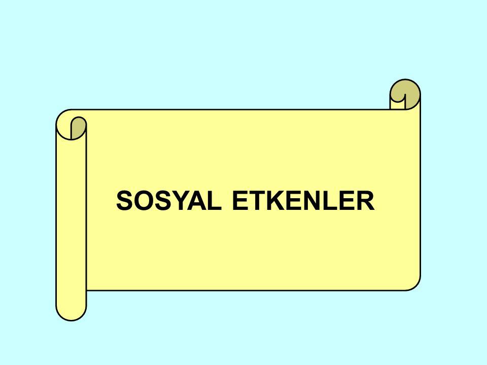 SOSYAL ETKENLER