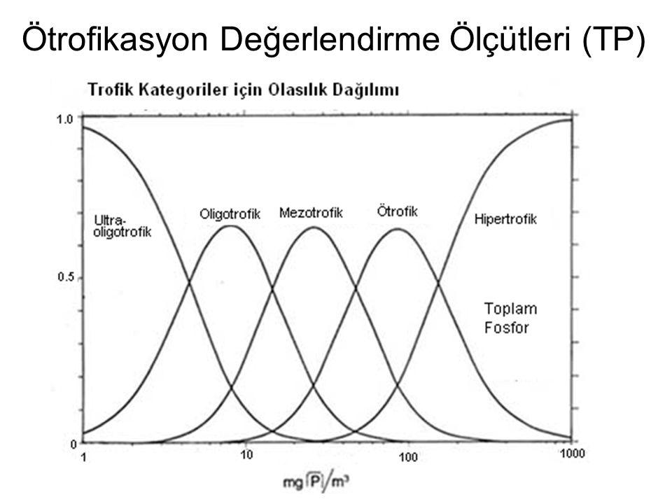 Ötrofikasyon Değerlendirme Ölçütleri (TP)
