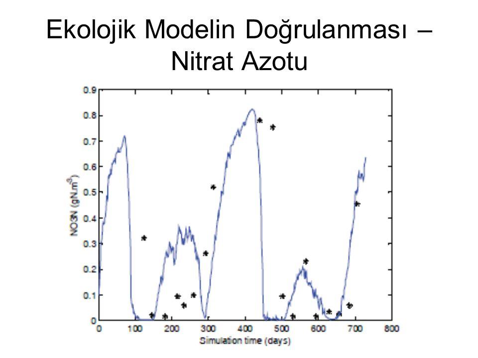 Ekolojik Modelin Doğrulanması – Nitrat Azotu