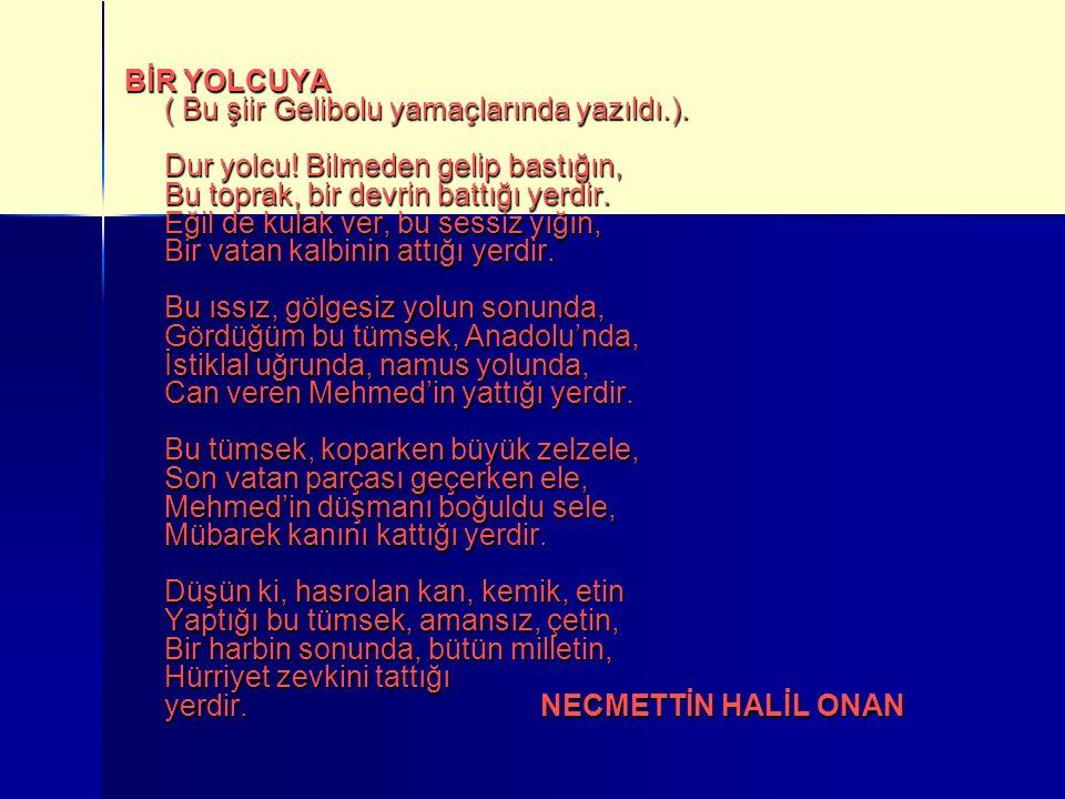 BİR YOLCUYA ( Bu şiir Gelibolu yamaçlarında yazıldı. ). Dur yolcu