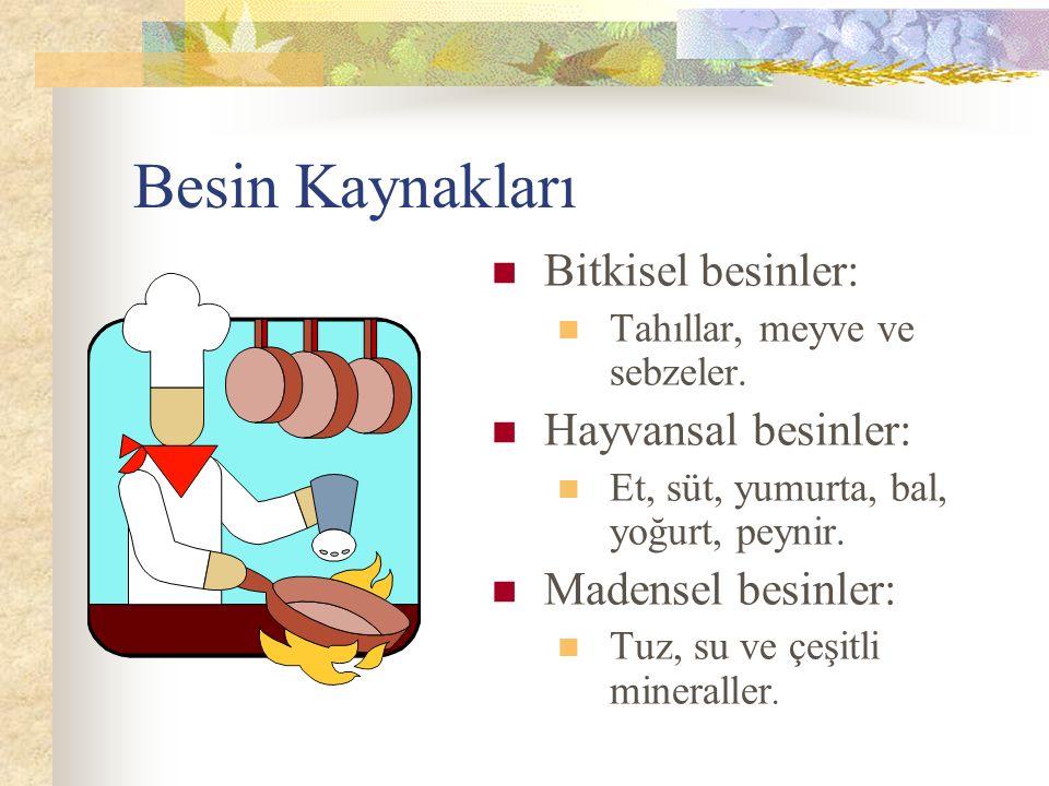 Besin Kaynakları Bitkisel besinler: Hayvansal besinler: