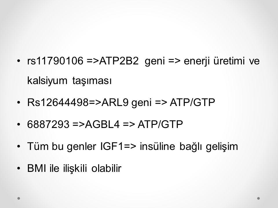 rs11790106 =>ATP2B2 geni => enerji üretimi ve kalsiyum taşıması