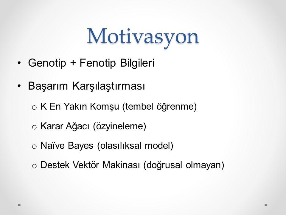 Motivasyon Genotip + Fenotip Bilgileri Başarım Karşılaştırması