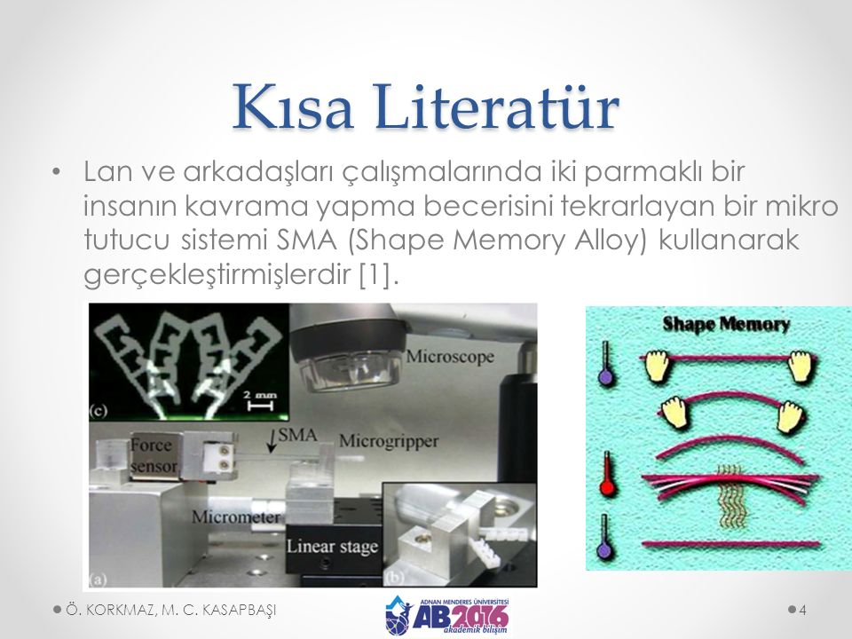 Kısa Literatür