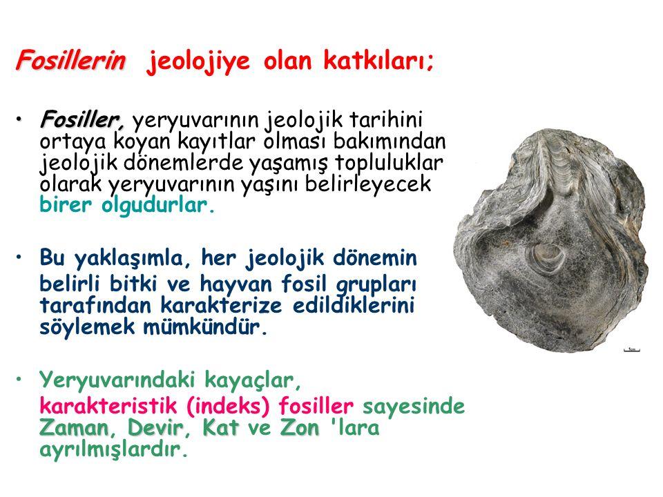 Fosillerin jeolojiye olan katkıları;