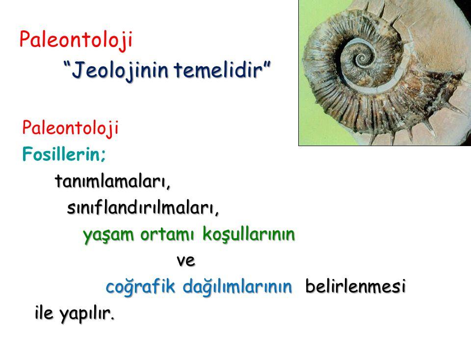 Jeolojinin temelidir