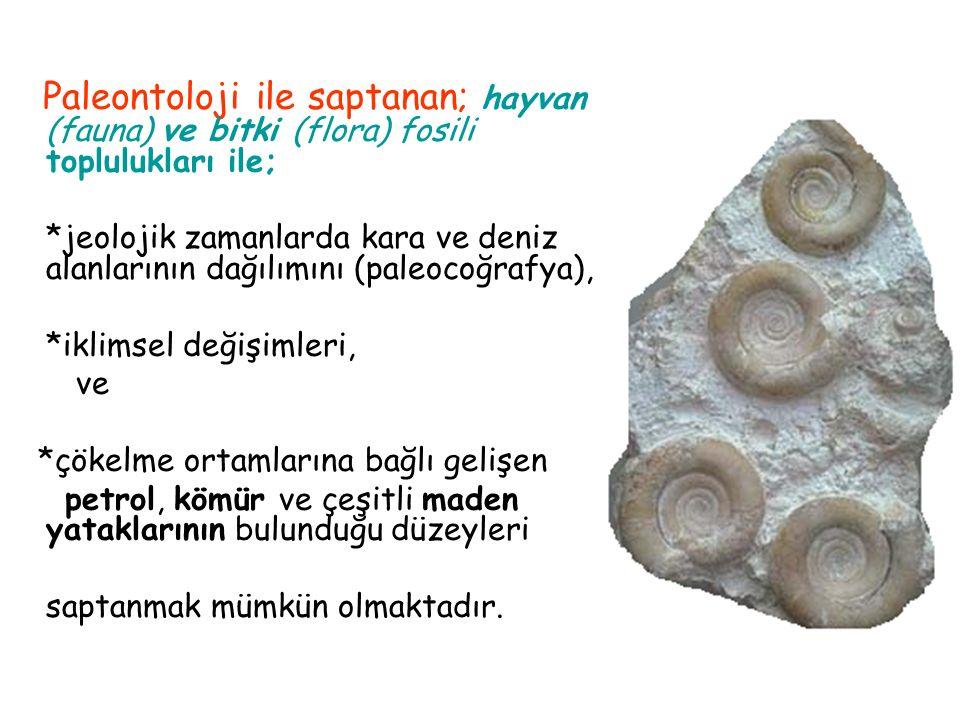 Paleontoloji ile saptanan; hayvan (fauna) ve bitki (flora) fosili toplulukları ile;